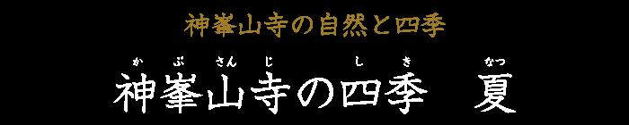 神峯山寺の四季 夏