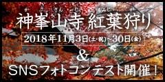 『神峯山寺 紅葉狩り』&SNSフォトコンテストのご案内はこちら