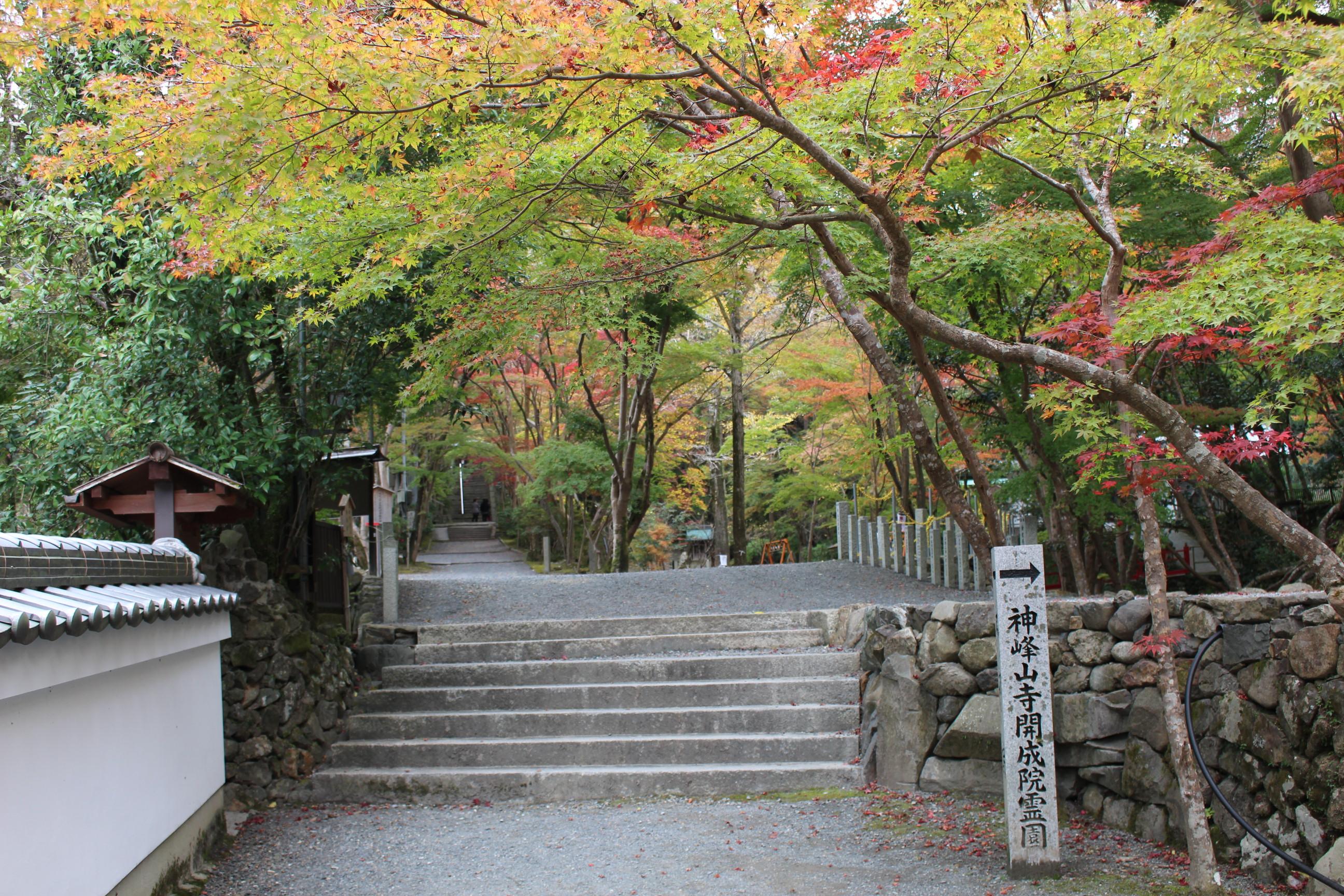 11/13神峯山寺紅葉情報 | 日本最...