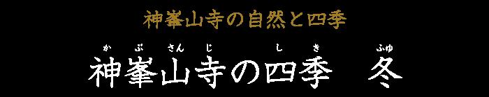 神峯山寺の四季 冬